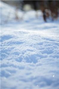 大雪2017