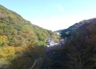 DSC00524おくゆもと昼食開場からの景色