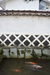 なまこ壁と錦鯉