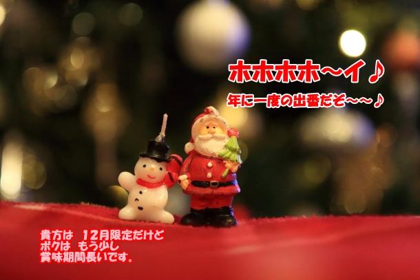 クリスマス始めました201700032730