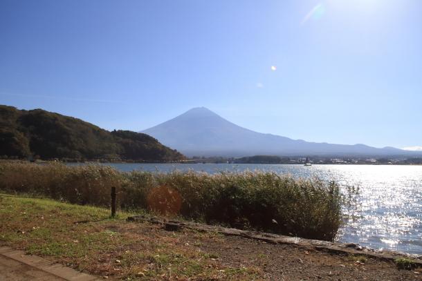山中湖紅葉散歩00030166