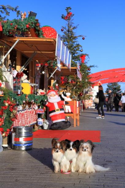 赤レンガ倉庫のクリスマス201700035364