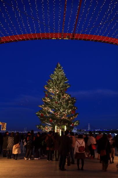 赤レンガ倉庫のクリスマス201700035426
