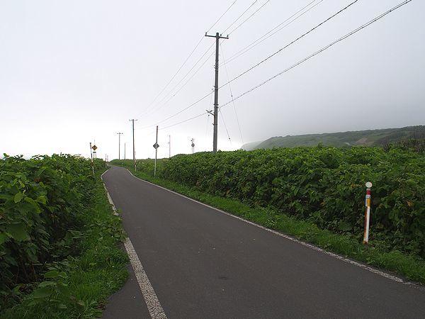 島の西部では道が狭くなる