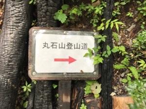 fc2blog_20171014194936ea6.jpg