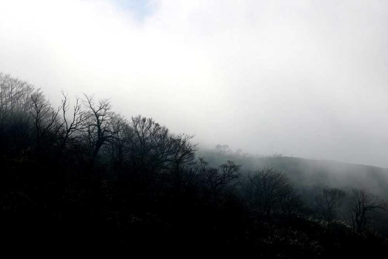 霧の伊吹山①
