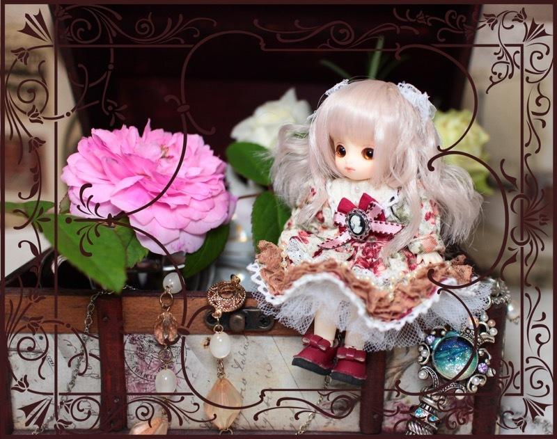 Brownie-nene0065.jpg