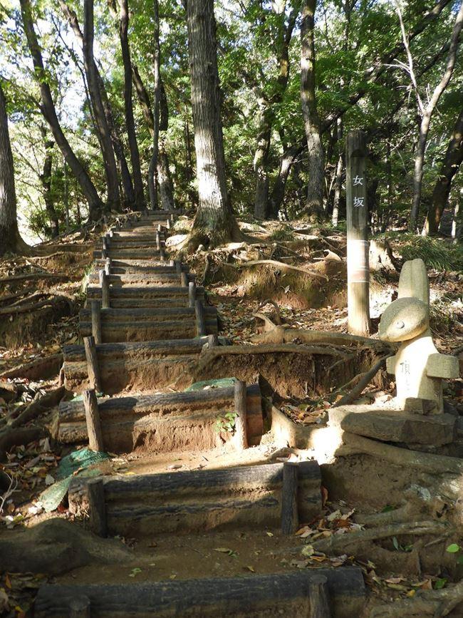 e 登り道階段