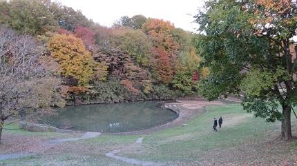 6公園IMG_3271