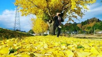 【 秋の名残と 迎える冬と 】①