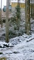 【 冬の静謐、その訪れ 】①