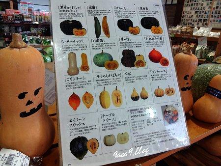 かぼちゃの祭りみたいなハロウィン