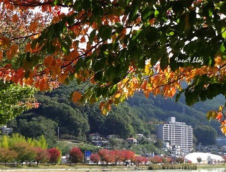 美しい信州諏訪湖の写真を再び 1