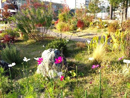 2017年11月10日 梅小路公園 京都水族館とか 花とか 3