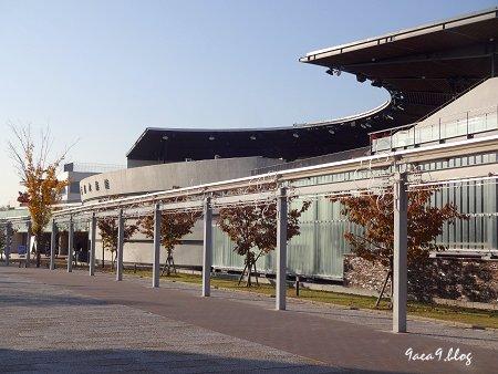 2017年11月10日 梅小路公園 京都水族館とか 花とか 6