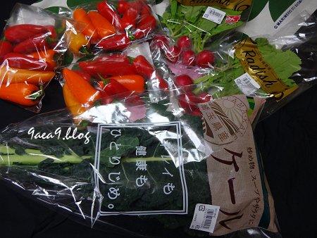50円野菜 2