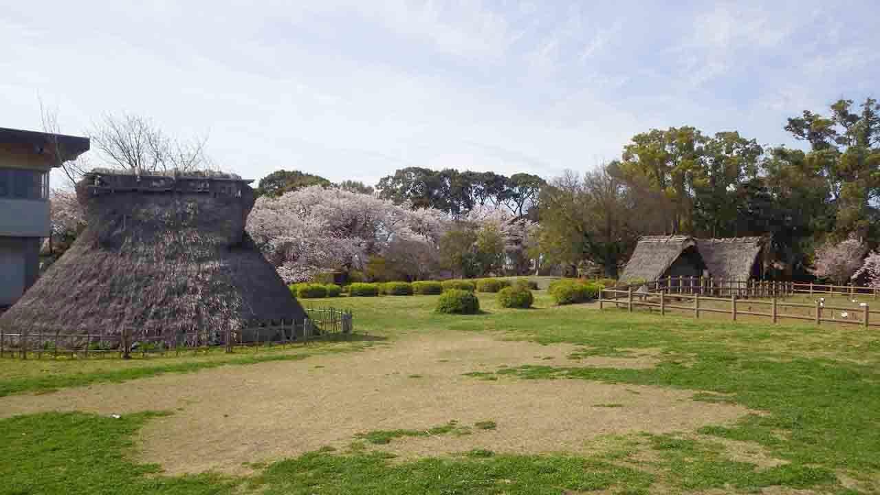 4月2日 蜆塚遺跡と浜松城公園の桜