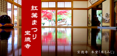 momijimatsuri_top.png