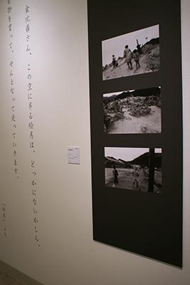 3-71112-4.jpg