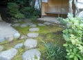 木久翁の手による苔庭