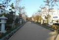 段葛の参道