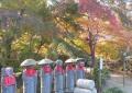 笠地蔵と紅葉
