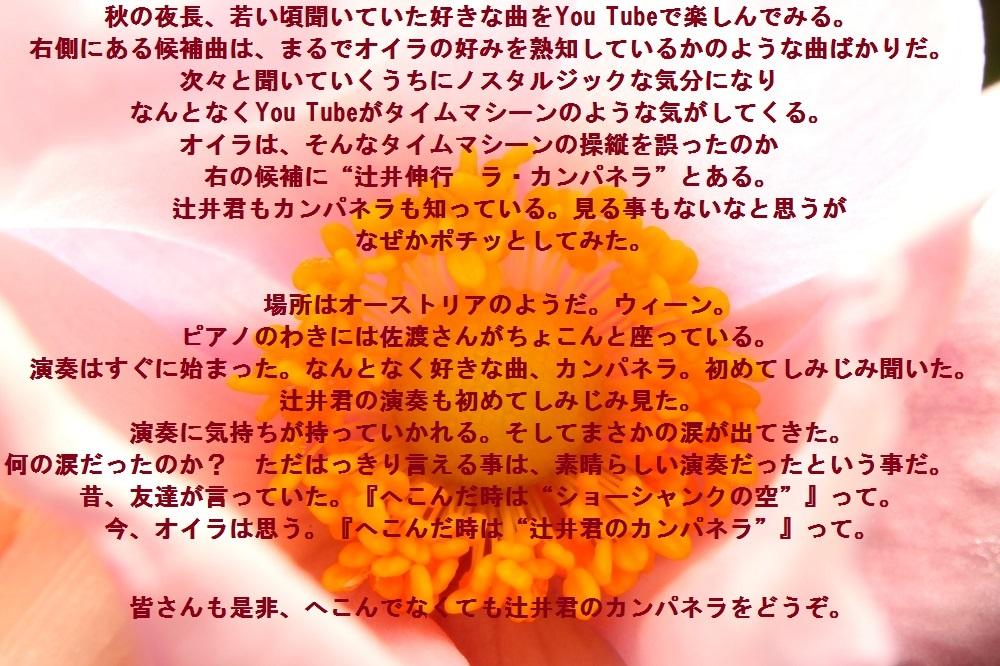 花 (2)dsa
