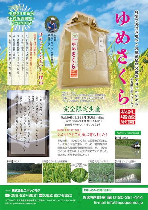 yumesakura_2017_2.jpg