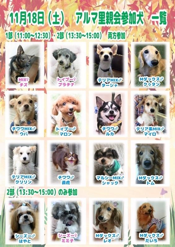 20171118ichiran.jpg