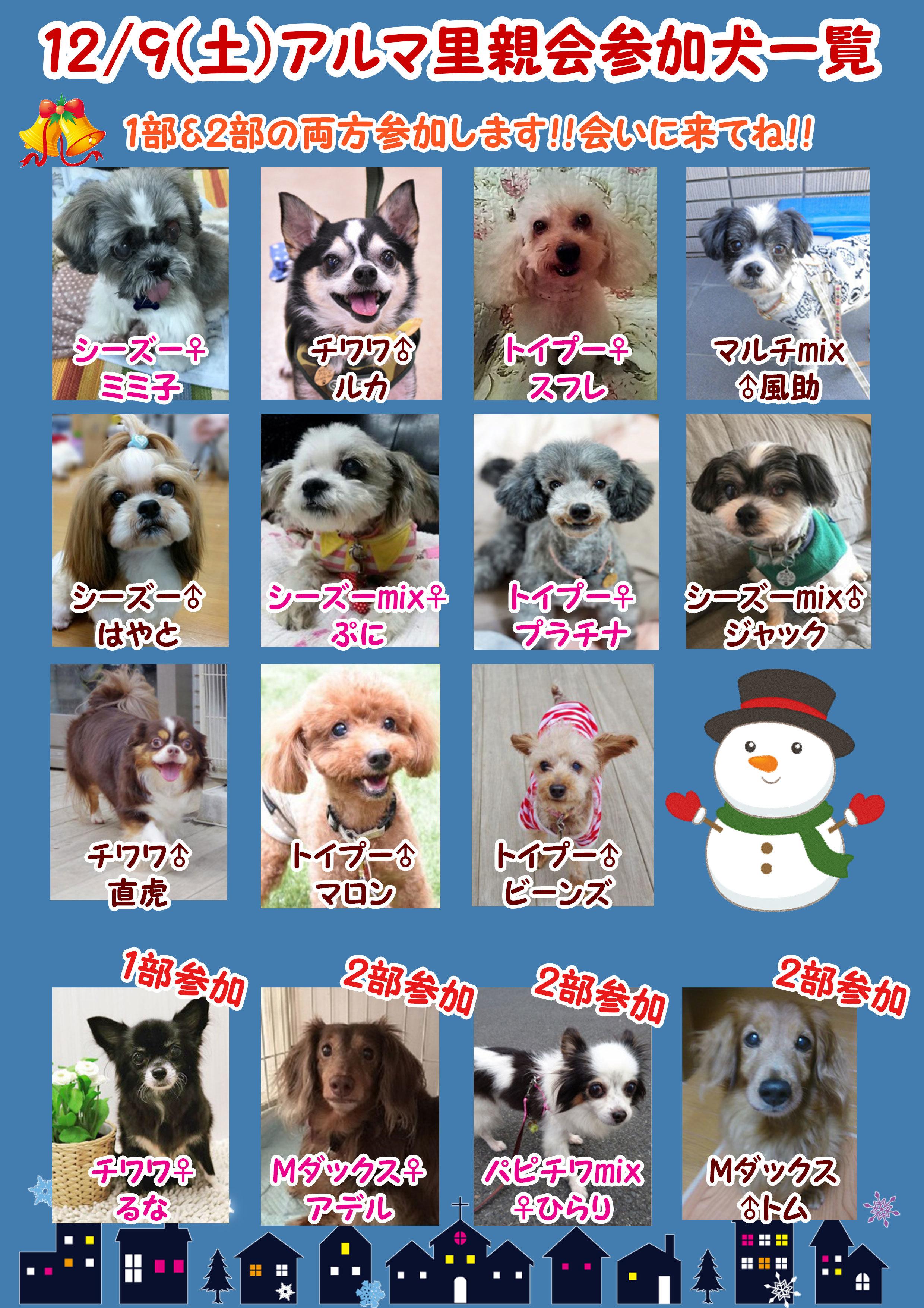 poster2_20171203194605967.jpg