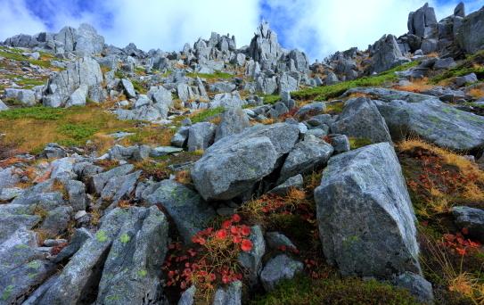 紅葉彩る中岳針峰
