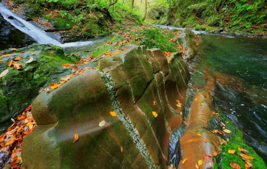 雨に濡れた蛇石