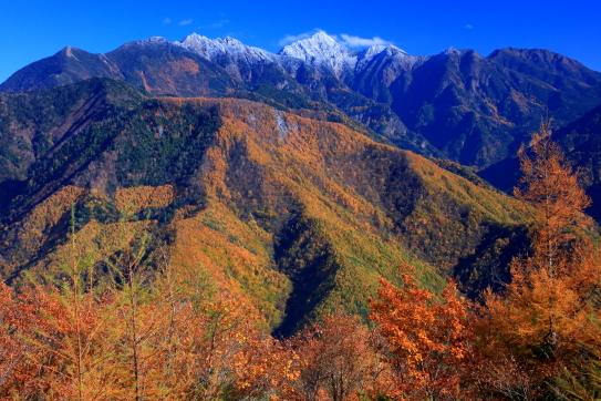 新雪と黄葉の彩る鋸岳と東駒ヶ岳