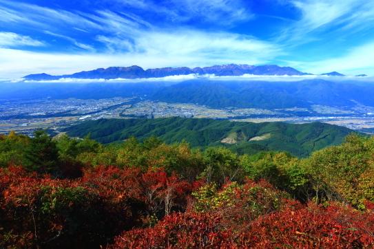 紅葉の高烏谷山から雲抱く中央アルプス大観