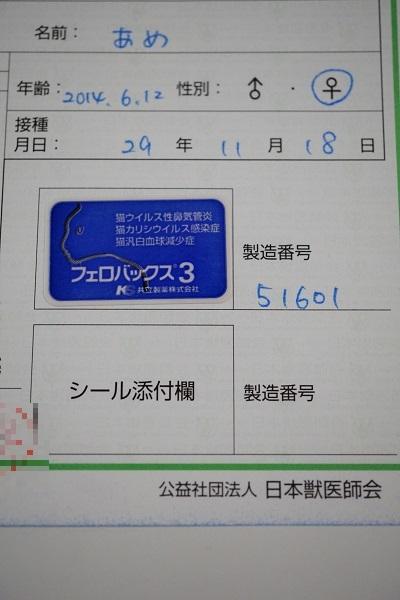 DSC09715-1.jpg
