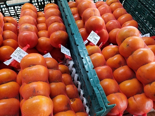 西村早生柿