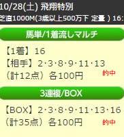 up1028_5.jpg