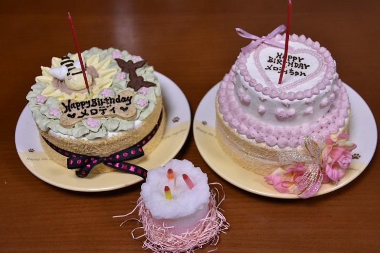 090 ケーキ