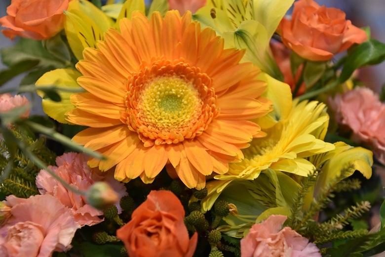 002 お花
