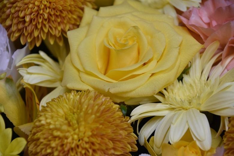 006 お花