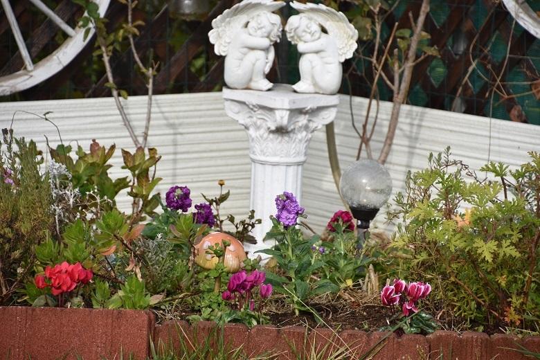 319 花壇