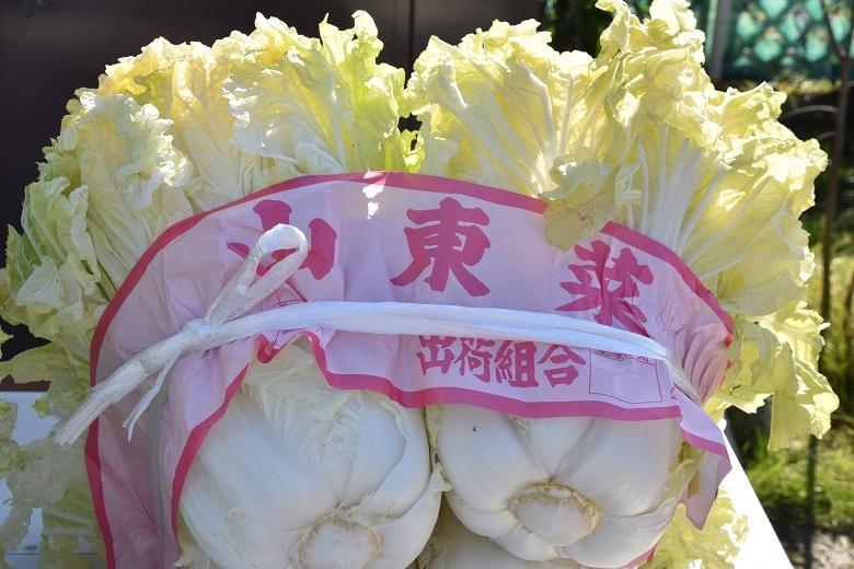 002 山東菜