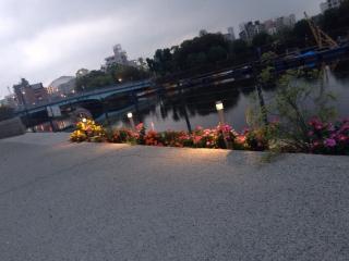 朝早くの河川敷