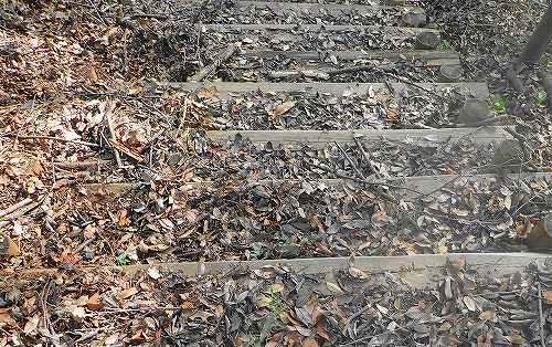 s-下り階段20170930