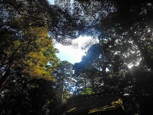 s-鹿島神宮20171009⑧