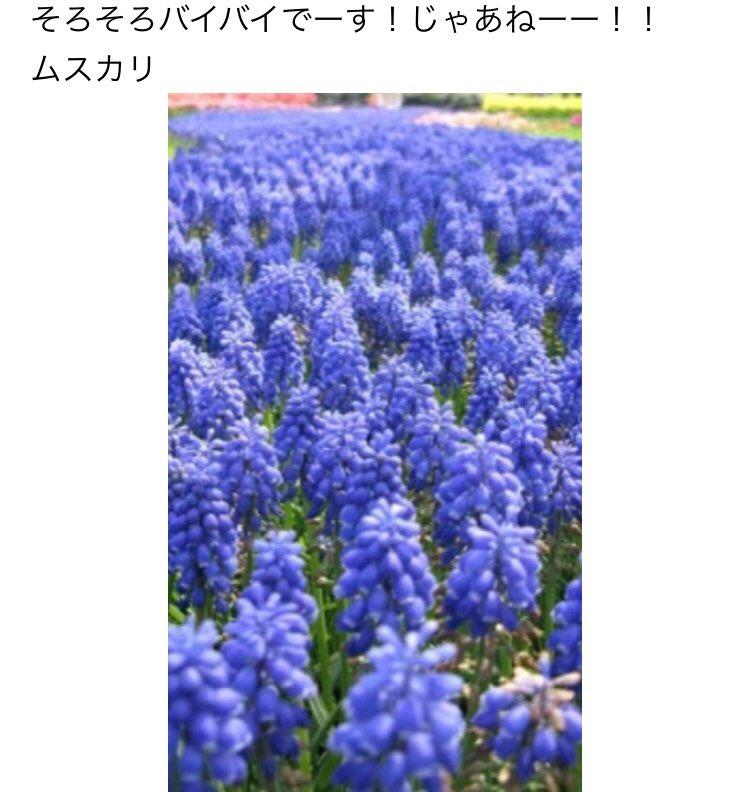 DK3cJ8RV4AEzcNb.jpg