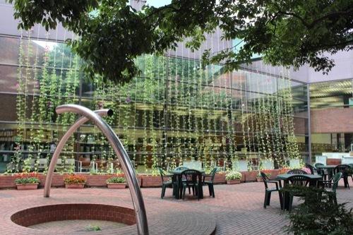 0276:金沢市立玉川図書館 本館北中庭③