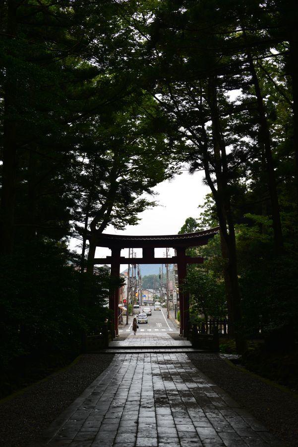 弥彦神社-2