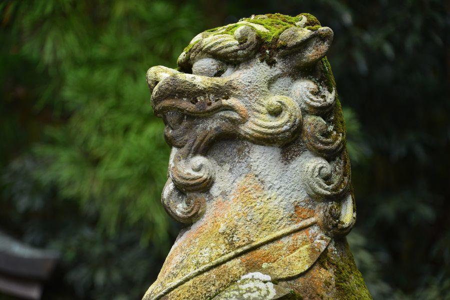 弥彦神社-7