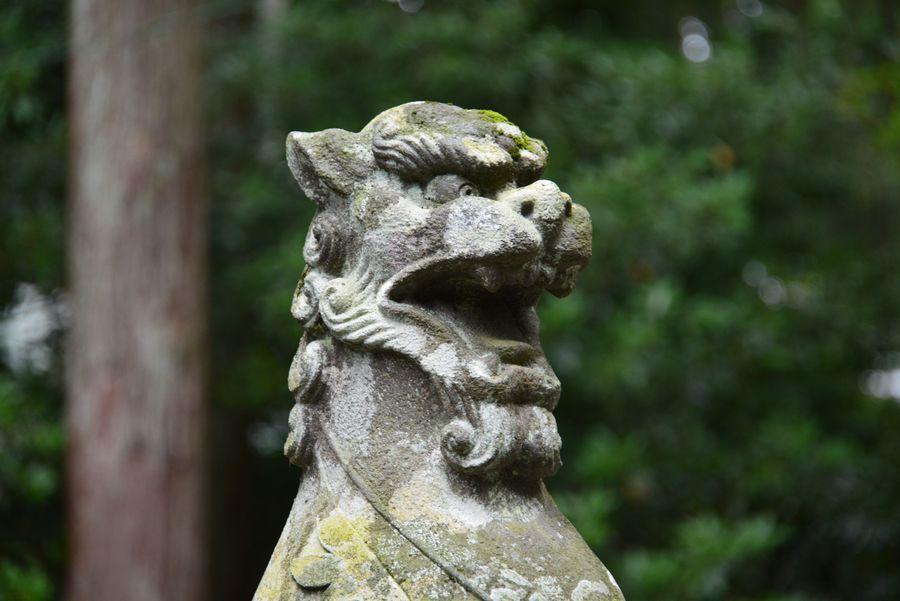 弥彦神社-8